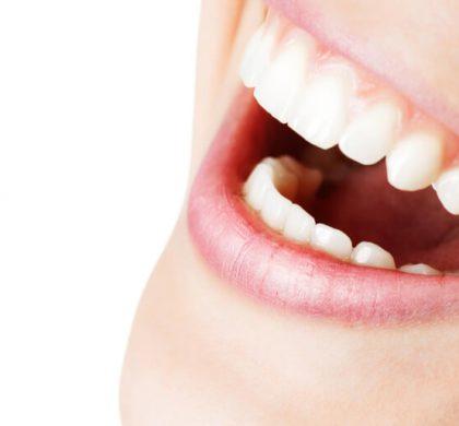 ¿Sabes para qué sirve cada diente de tu boca? Te lo contamos
